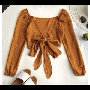 Plunging neck tied bow knot crop blouse